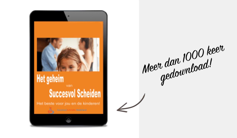 E-book Succesvol Scheiden
